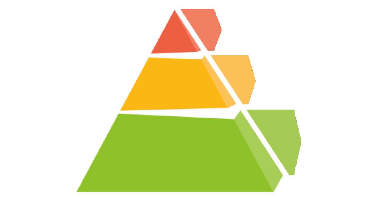 PBS Pyramid